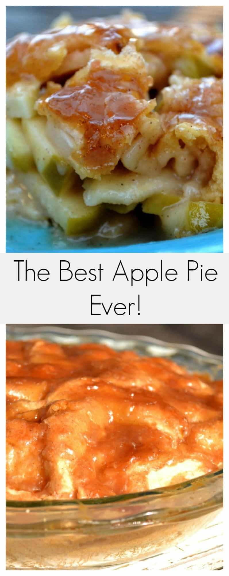 old fashioned all american apple pie recept yummly old fashioned all ...