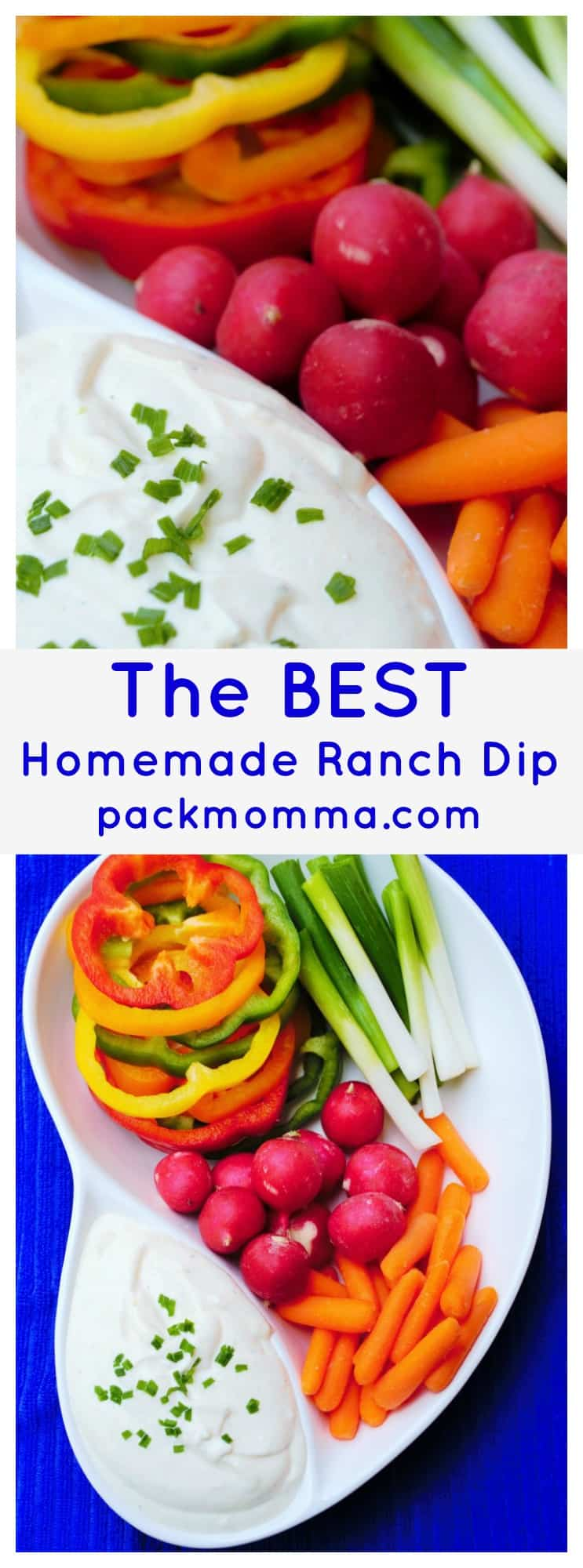Homemade Ranch Dip | Homemade Ranch Dip is quick and easy and THIS ranch dip is better than any you will buy in the store. You will be amazed at how good this really is! | Pack Momma | https://www.packmomma.com