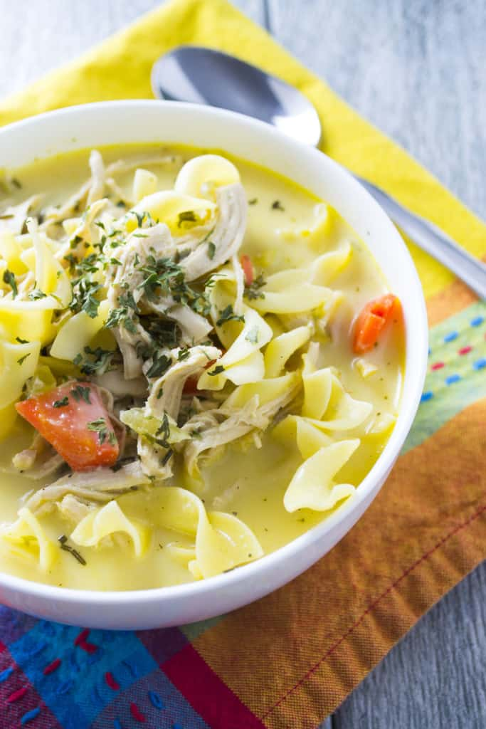 Chicken Noodle Soup - Pack Momma