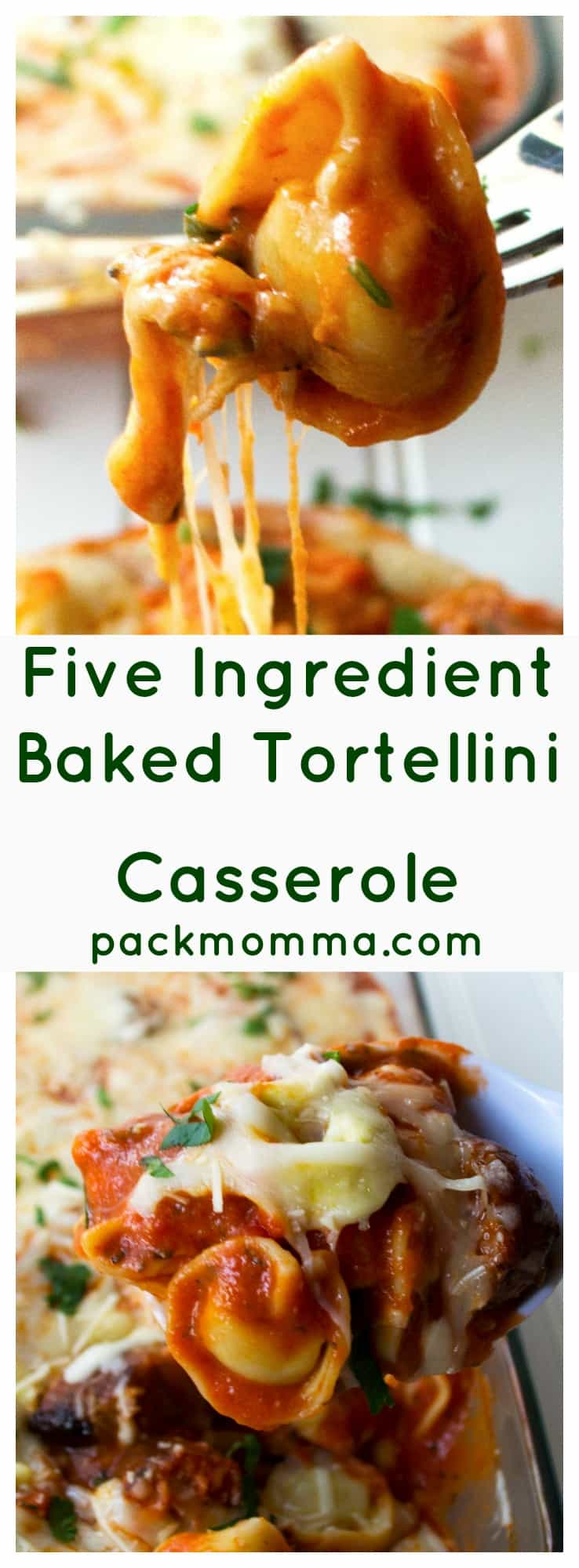 Five Ingredient Baked Tortellini Casserole | This Five Ingredient Baked Tortellini Casserole is the ultimate comfort food. A hot, hearty, delicious meal with only five ingredients and in 30 minutes! | Pack Momma | https://www.packmomma.com