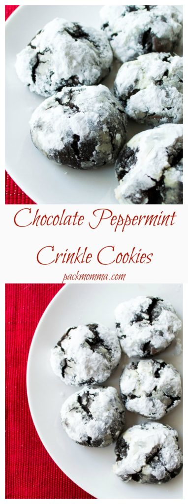 Chocolate Peppermint Crinkle Cookies | Chocolate Peppermint Crinkle Cookies are the perfect way to celebrate the holiday season. Rich, chewy, indulgent and bursting with peppermint flavor.| Pack Momma | www.packmomma.com