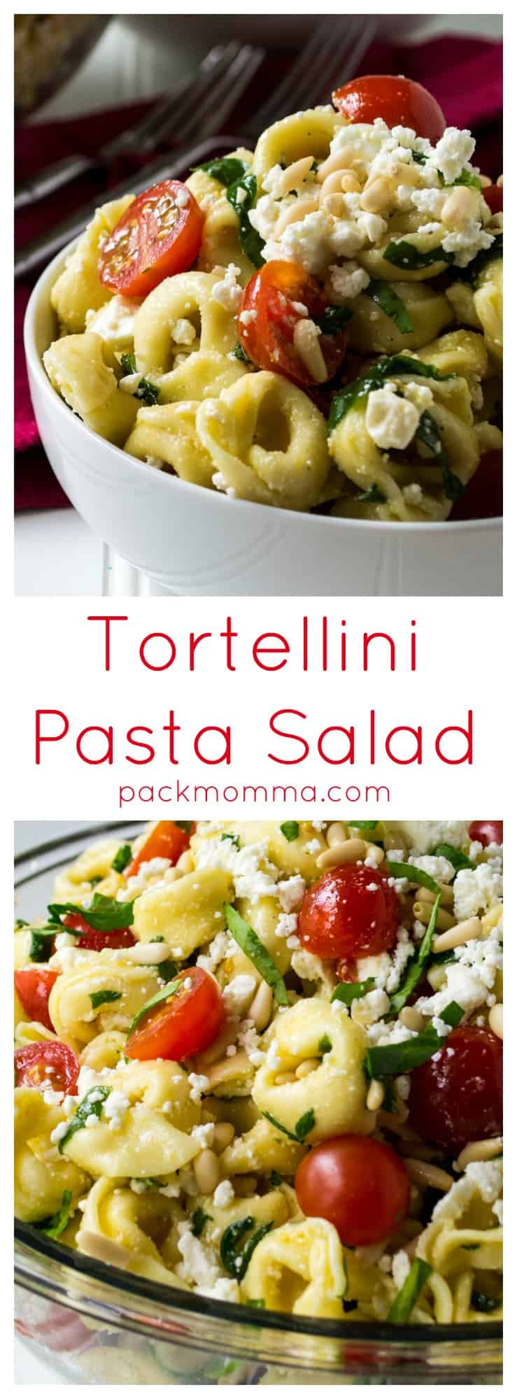 Tortellini Pasta Salad | This Tortellini Pasta Salad is light, refreshing and so quick to put together it is the perfect side dish to bring to any of your summer backyard parties. | Pack Momma | https://www.packmomma.com