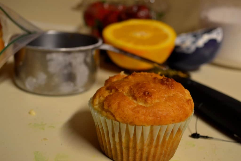 Blueberry Orange Muffin - Take #2
